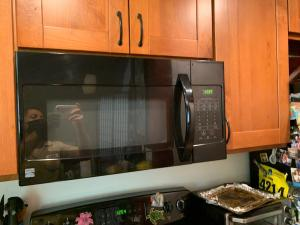 Img Microwave 2021-06-15 13:11