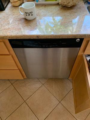 Img Dishwasher 2021-06-10 13:19