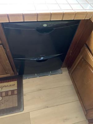 Img Dishwasher 2021-06-21 13:45