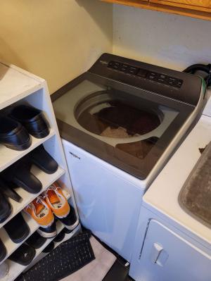 Img Washing Machine 2021-09-16 13:03